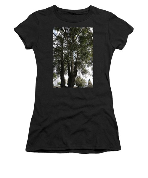 Up-view Of Oak Tree Women's T-Shirt