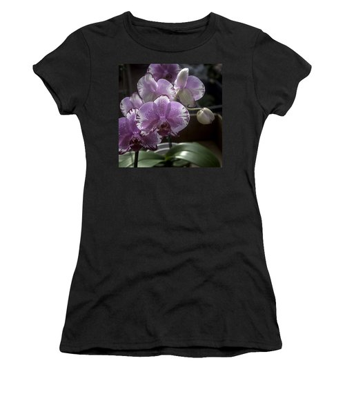 Variegated Fuscia And White Orchid Women's T-Shirt (Athletic Fit)