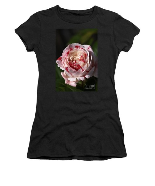 Women's T-Shirt (Junior Cut) featuring the photograph Variegated Rose by Joy Watson