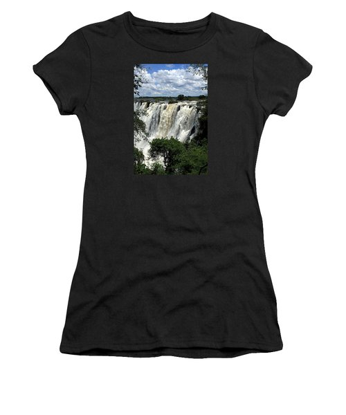 Victoria Falls On The Zambezi River Women's T-Shirt (Athletic Fit)