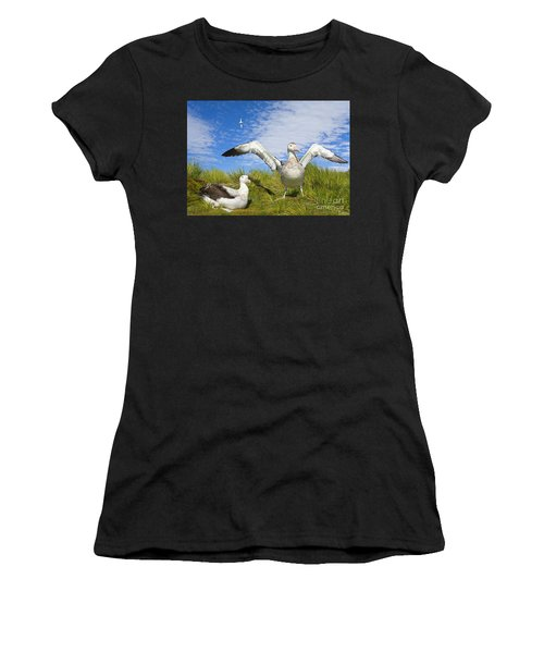 Wandering Albatross Courting  Women's T-Shirt (Athletic Fit)
