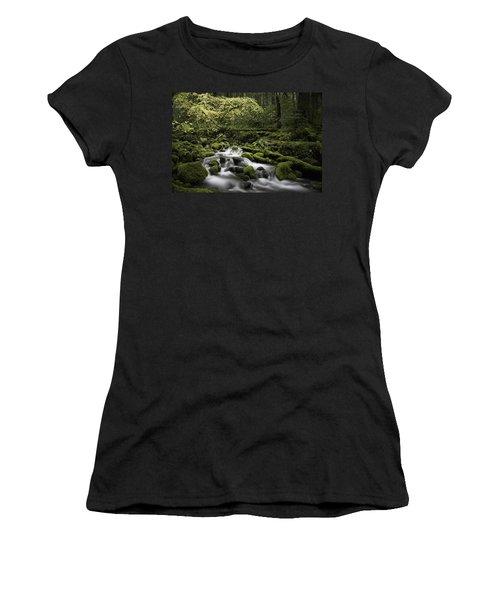 Waterfall In The Fall Women's T-Shirt