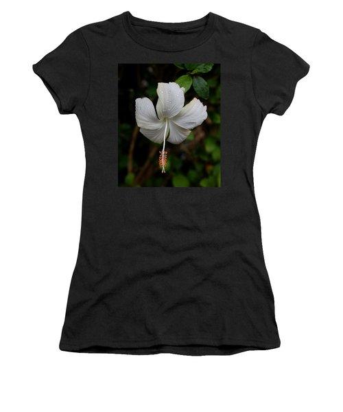 White Hibiscus Women's T-Shirt (Junior Cut) by Pamela Walton