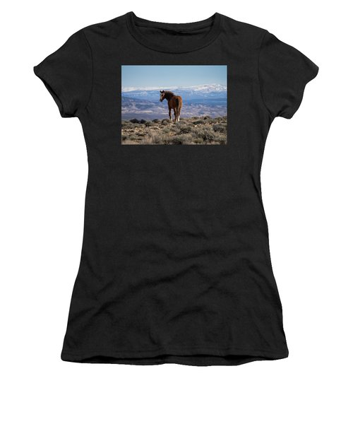 Wild Stallion Of Sand Wash Basin Women's T-Shirt (Athletic Fit)