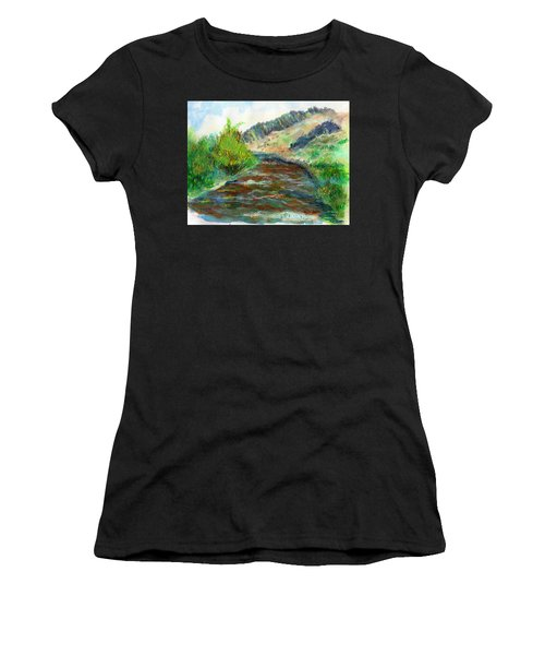 Willow Creek In Spring Women's T-Shirt (Athletic Fit)