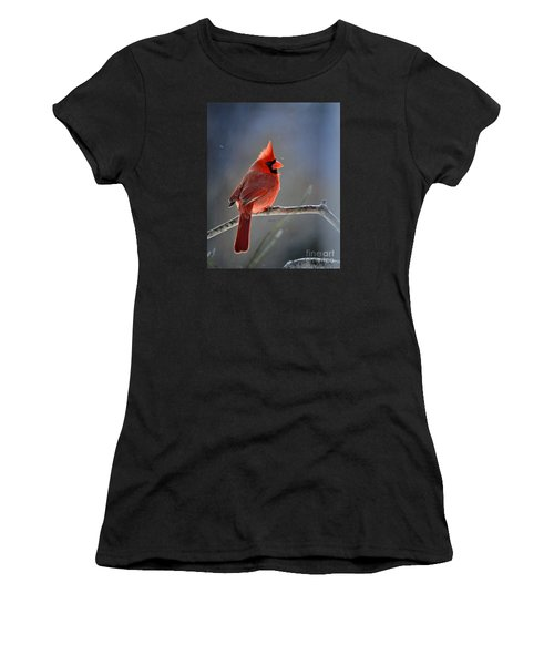 Winter Morning Cardinal Women's T-Shirt (Athletic Fit)