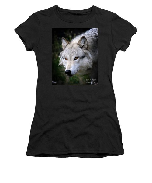 Wolf Stare Women's T-Shirt (Junior Cut) by Steve McKinzie