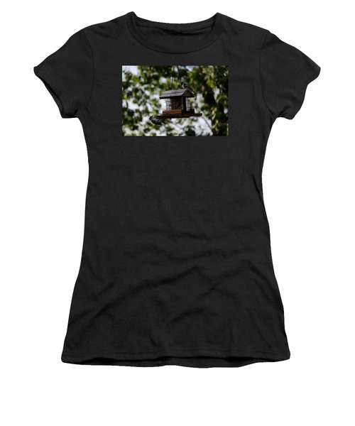 Woodpeckers At Dinner Women's T-Shirt