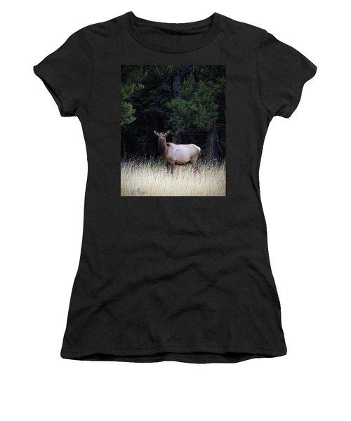 Forest Elk Women's T-Shirt (Junior Cut) by Steve McKinzie