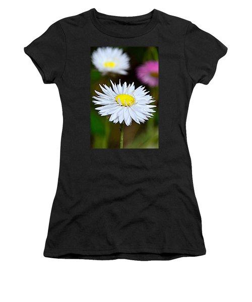 A Daisy Women's T-Shirt (Junior Cut) by Martina Fagan