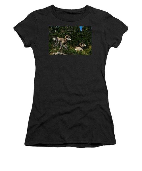 Big Horn Sheep Glacier National Park Women's T-Shirt (Athletic Fit)
