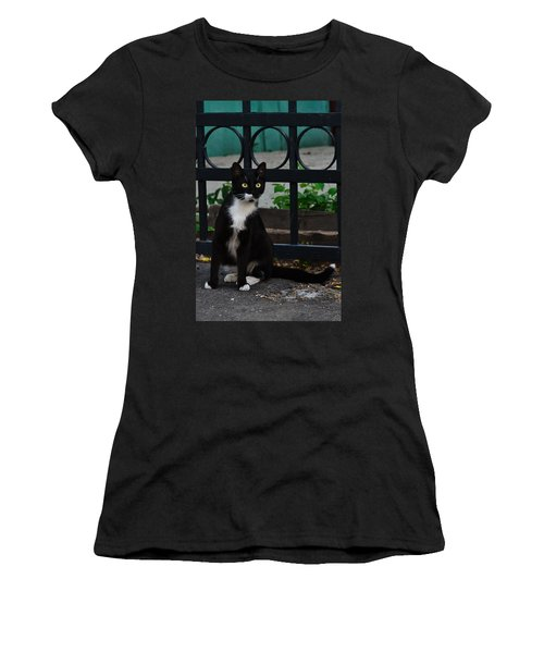 Black Cat On Black Background Women's T-Shirt