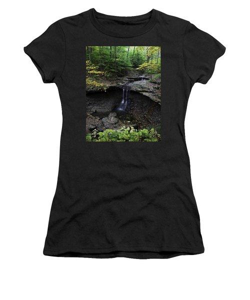 Blue Hen Falls Women's T-Shirt