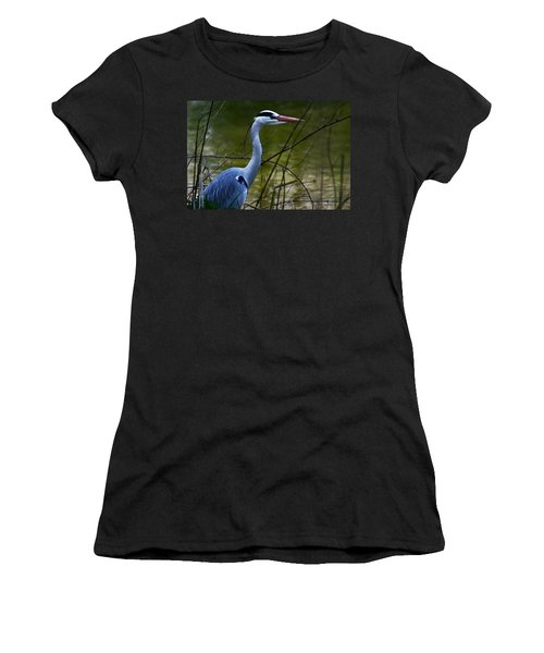 Blue Heron Vondelpark Amsterdam Women's T-Shirt (Athletic Fit)