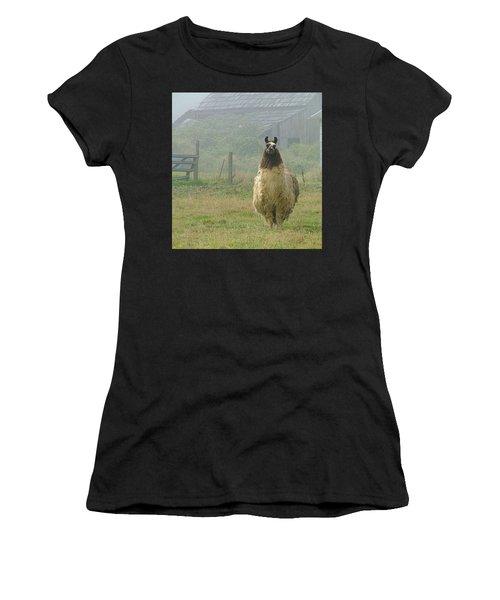 Coast Llama Women's T-Shirt (Athletic Fit)