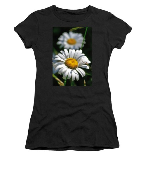 Daisies Aglow Women's T-Shirt
