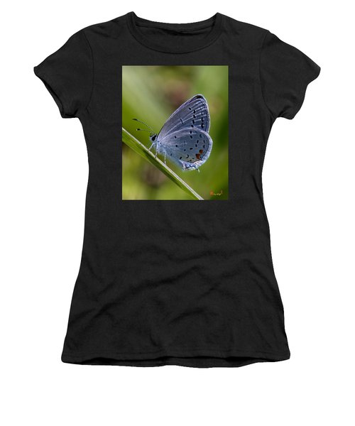 Eastern Tailed-blue Butterfly Din045 Women's T-Shirt (Athletic Fit)