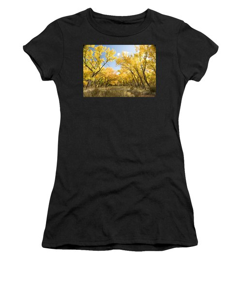 Fall Leaves In New Mexico Women's T-Shirt