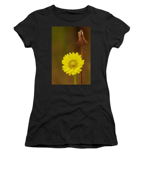 False Dandelion Flower With Wilted Fruit Women's T-Shirt