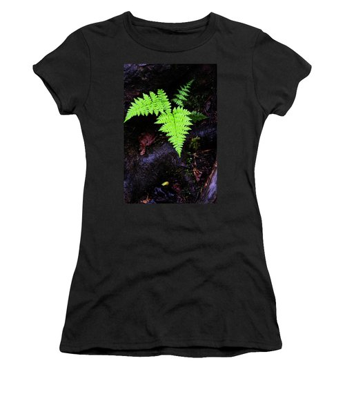 Fern Along Kaaterskill Women's T-Shirt