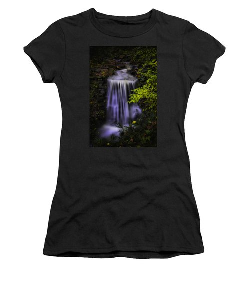 Garden Falls Women's T-Shirt (Junior Cut) by Lynne Jenkins