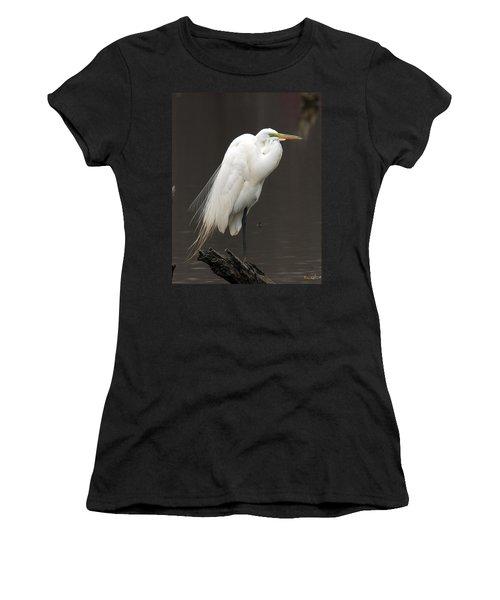 Great Egret Resting Dmsb0036 Women's T-Shirt