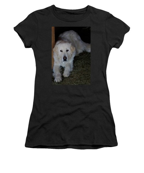 Guarding The Barn Women's T-Shirt