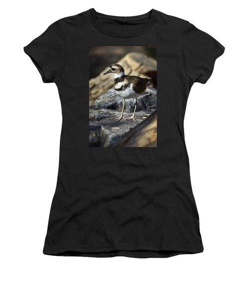 Killdeer Women's T-Shirt (Junior Cut) by Saija  Lehtonen