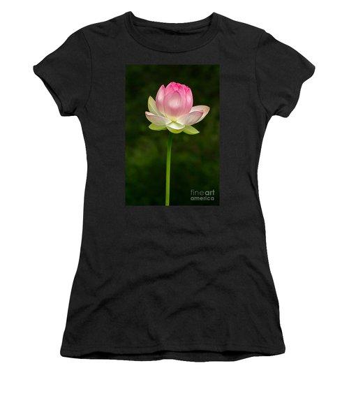 No Less Magical Women's T-Shirt