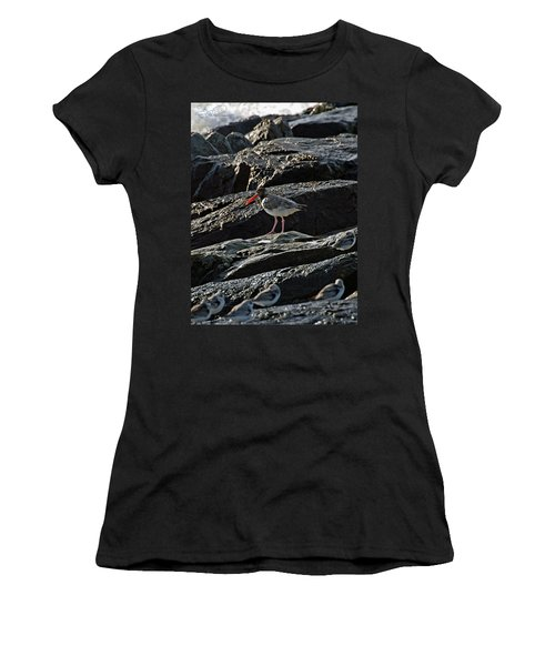Oyster On The Rocks Women's T-Shirt
