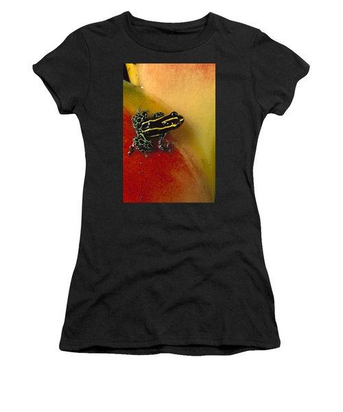 Phantasmal Poison Dart Frog Women's T-Shirt