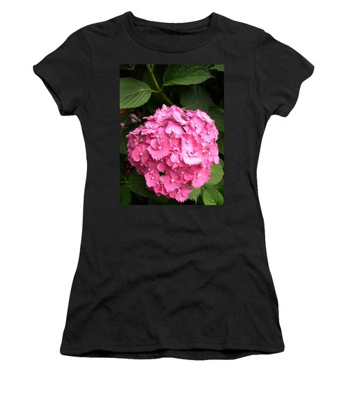 Pink Hydranga Women's T-Shirt (Junior Cut) by Claude McCoy