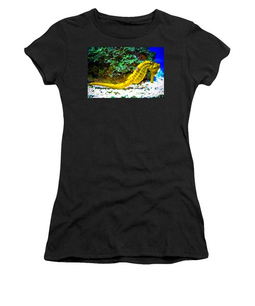 Yellow Seahorse Women's T-Shirt (Athletic Fit)