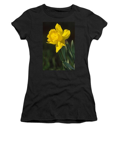 Trumpeting Daffodil Women's T-Shirt (Athletic Fit)
