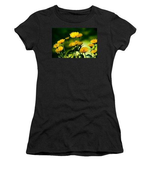 Yellow Daisies Women's T-Shirt (Junior Cut) by Rich Franco