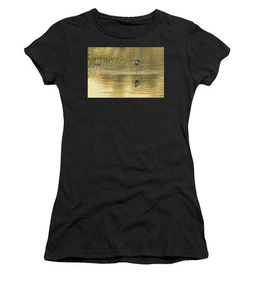 Black-winged Stilt Women's T-Shirt (Athletic Fit)