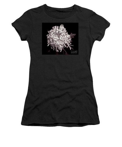 Chrysanthenmum 'satin Ribbon' Women's T-Shirt