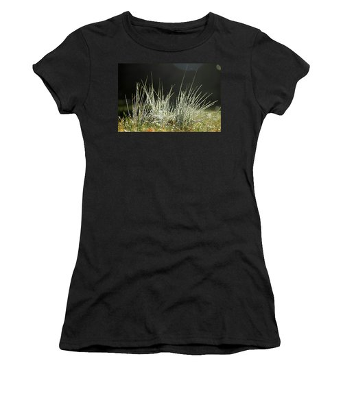Close-up Of Dew On Grass, In A Sunny, Humid Autumn Morning Women's T-Shirt