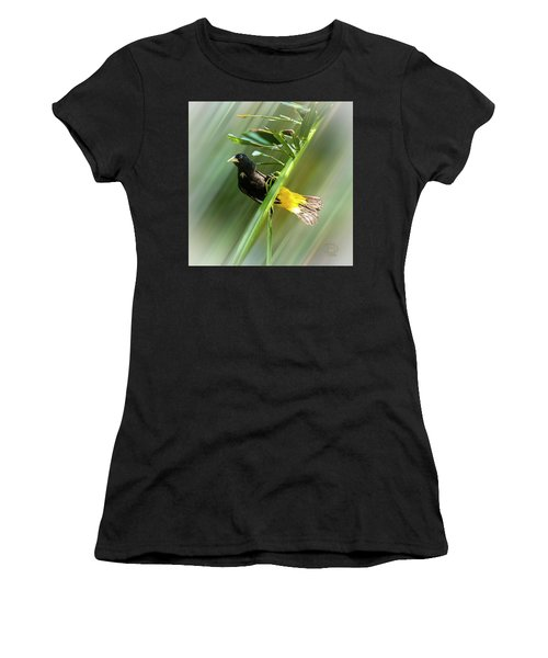 Crested Oropendola Women's T-Shirt (Athletic Fit)