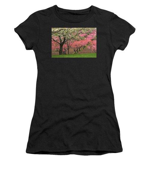 Fruit Orchard Women's T-Shirt