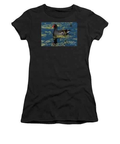 Moorhen Women's T-Shirt