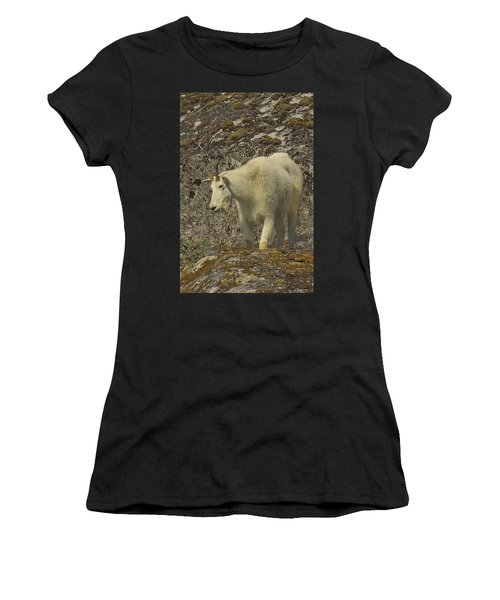 Mountain Goat Ewe Women's T-Shirt