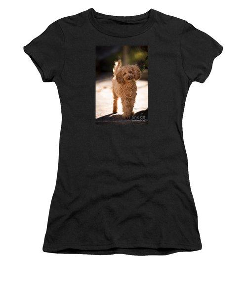 Poodle Women's T-Shirt (Athletic Fit)
