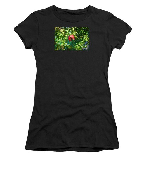 Ripe Pomegranate On The Tree In Jerusalem During Sukkoth Women's T-Shirt (Athletic Fit)
