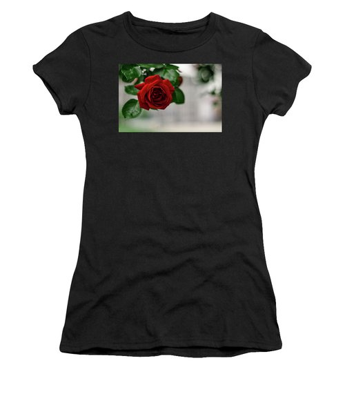 Roses In The City Park Women's T-Shirt