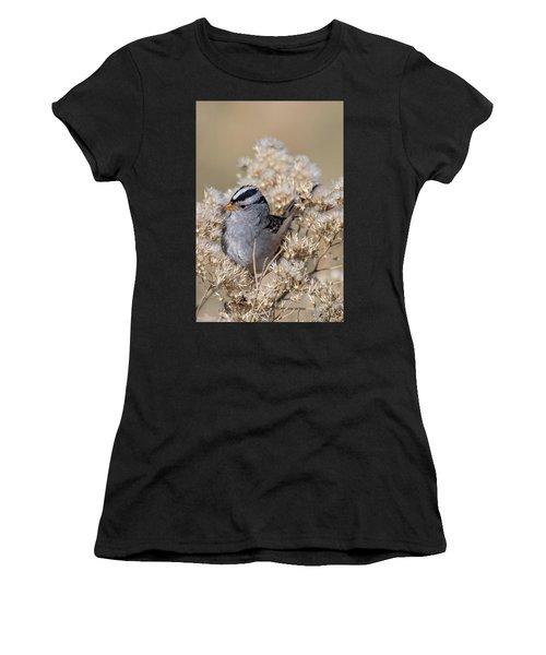 Sparrow Women's T-Shirt