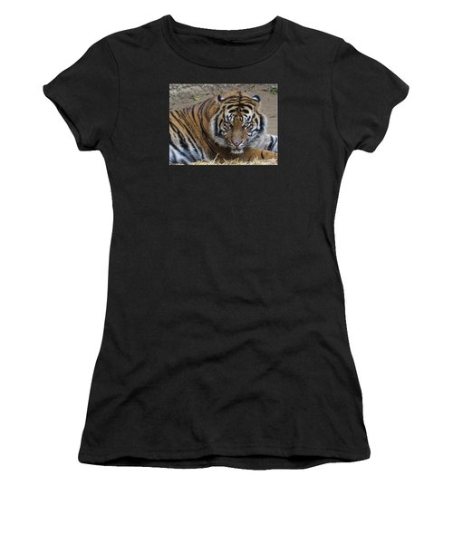 Staring Tiger Women's T-Shirt (Athletic Fit)