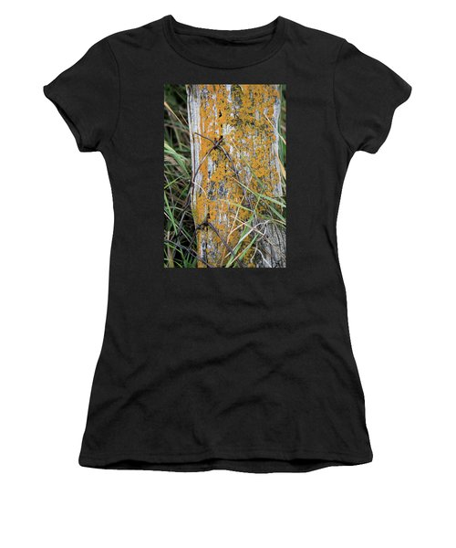 Weathered Fence Women's T-Shirt (Athletic Fit)
