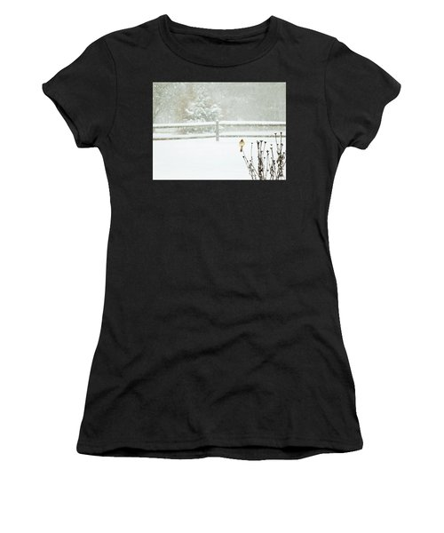 Winter Cardinal Women's T-Shirt