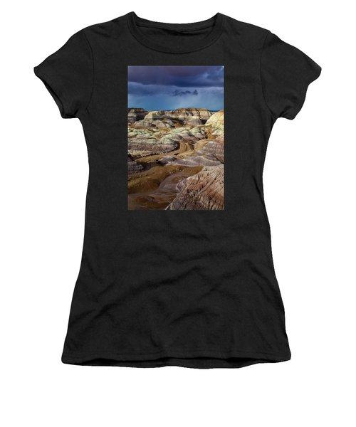 The Petrified Forest National Park Women's T-Shirt